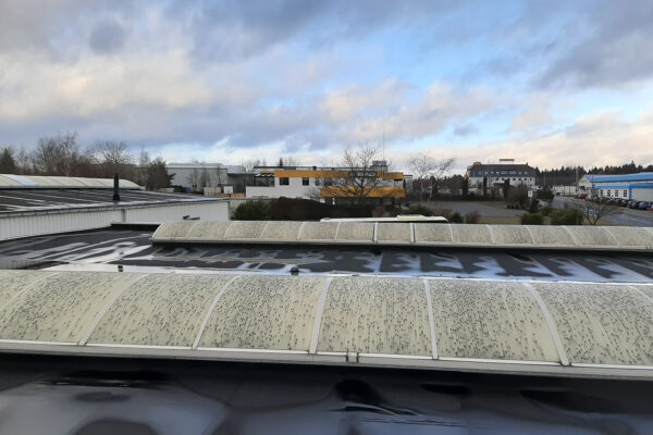 IGETEC-Hagelschlagsanierung-Schaden-02